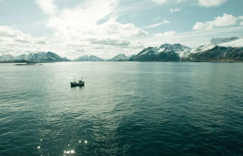 Nachhaltiger Fischfang im Meer