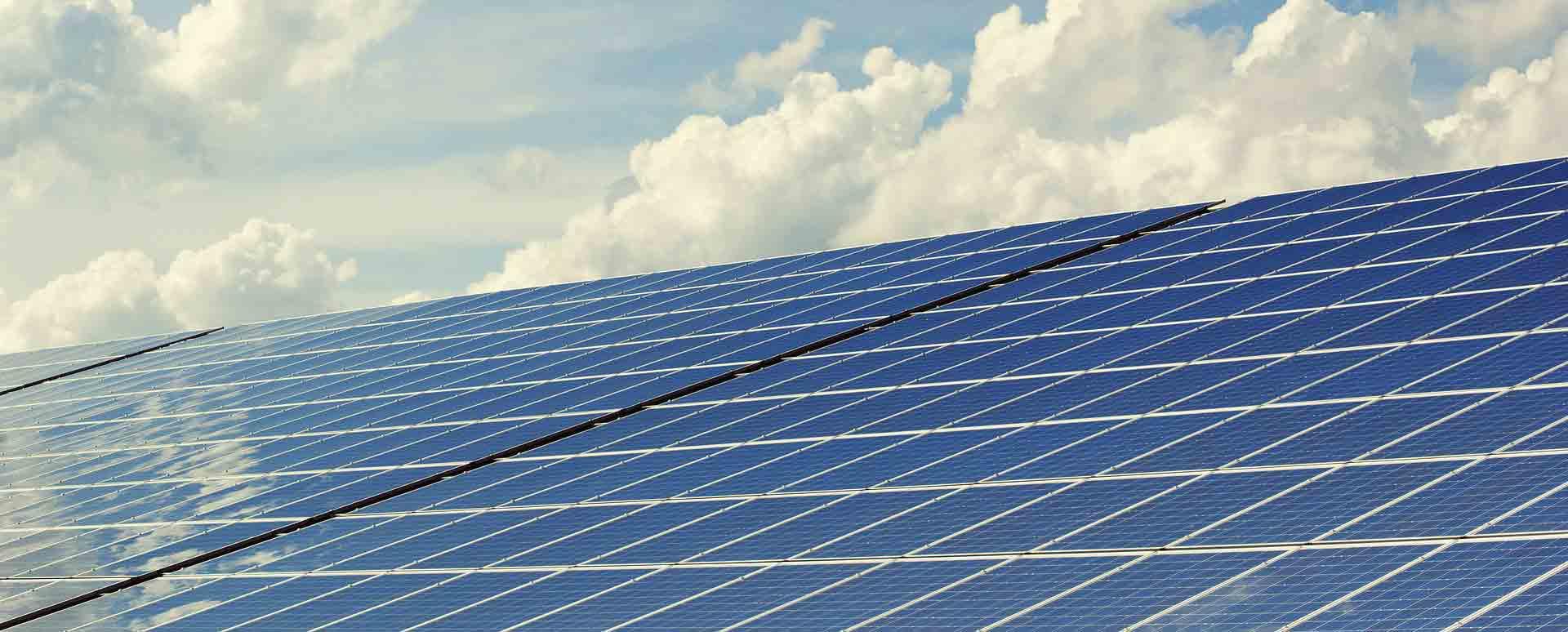 SUSHIdeluxe - 100 % ökologisch und elektrisch